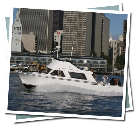 What we offer san francisco fishing charter boat for Charter fishing san francisco